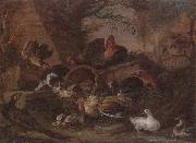 unknow artist Still life of fowl in a farmyard,with a cat stealing a bantam chick