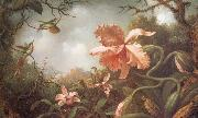 Martin Johnson Heade The Hummingbirds and Two Varieties of Orchids