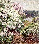 Metcalf, Willard Leroy Mountain Laurel oil painting picture wholesale