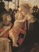 Sandro Botticelli The Virgin and child with John the Baptist (mk05)