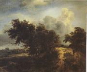 Jacob van Ruisdael The Bush (mk05) oil painting picture wholesale