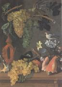Juan de  Espinosa Still Life with Grapes (san 05) oil painting picture wholesale