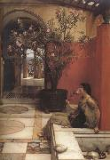 Alma-Tadema, Sir Lawrence An Oleander (mk23) oil painting reproduction