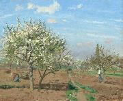Orchard in  Bloom,Louveciennes (nn02)