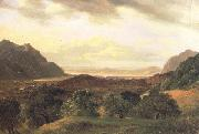 Alexandre Calame The Rhone Valley at Bex with a View to the Lake of Geneva (nn02) oil painting reproduction