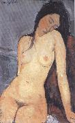 Amedeo Modigliani Seted Nude (mk39)