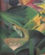 Franz Marc Details of The Monkey (mk34) oil painting reproduction