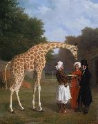 Jacques-Laurent Agasse The Nuian Giraffe (mk25) oil painting