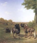 Jacques-Laurent Agasse White-Tailed Gnus (mk25) oil painting