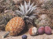 John Sherrin A Pineapple,a Peach and Plums on a mossy Bank (mk37) oil painting