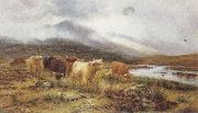 Louis bosworth hurt Highland Cattle on the Banks of a River (mk37) oil painting picture wholesale