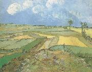 Wheat Fields at Auvers under Clouded Sky (nn04)