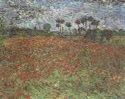 Field with Poppies (nn04)