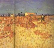 Harvest in Provence (nn04)