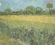 View of Arles with Irises in the Foreground (nn04)