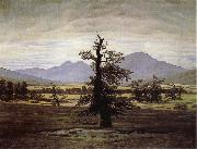 Caspar David Friedrich The Lone Tree oil painting reproduction