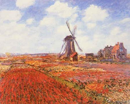 Claude Monet Tulip Fields with Windmill