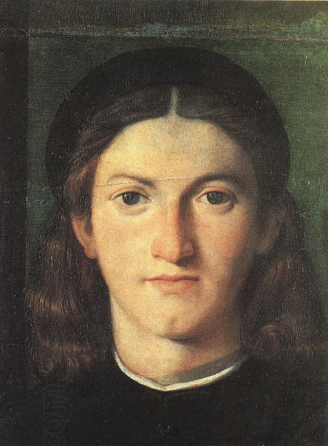 LOTTO, Lorenzo Head of a Young Man g