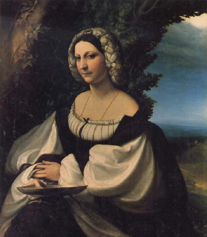 Correggio Portrait of a Lady China oil painting art