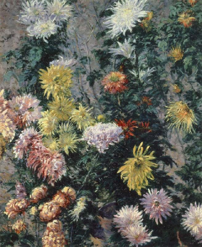 Gustave Caillebotte Chrysanthemums,Garden at Petit Gennevilliers China oil painting art