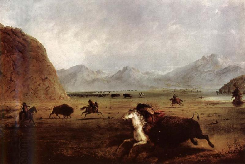 Alfred Jacob Miller Buffalo Hunt oil painting picture
