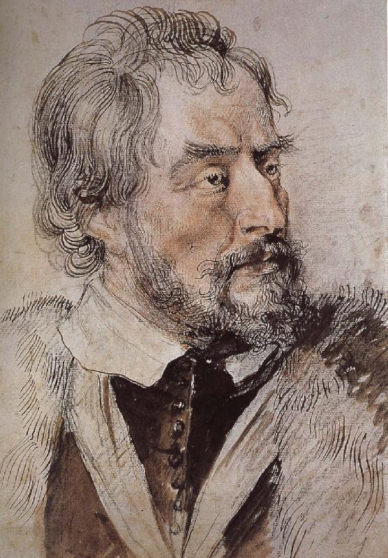 Peter Paul Rubens Portrait of thomas