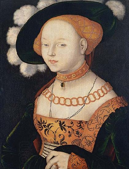 Hans Baldung Grien Portrait of a Lady oil painting picture