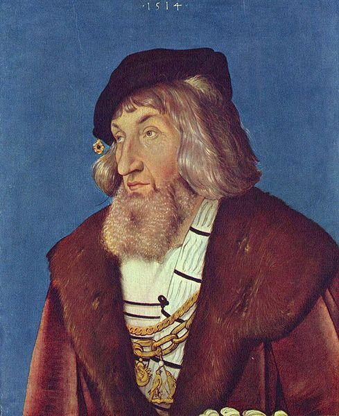 Hans Baldung Grien Portrait of a Man oil painting picture