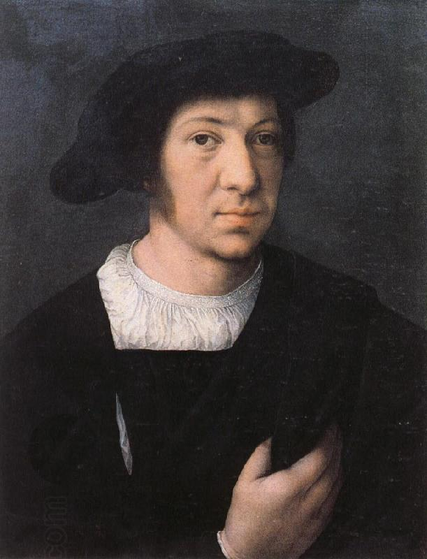Bernard van orley Portrait of a Man oil painting picture