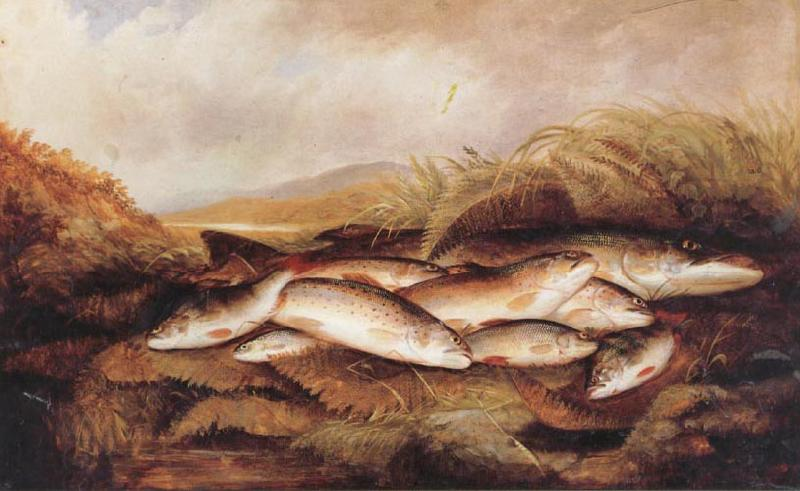 Henry Leonidas Rolfe The Day's Catch oil painting picture