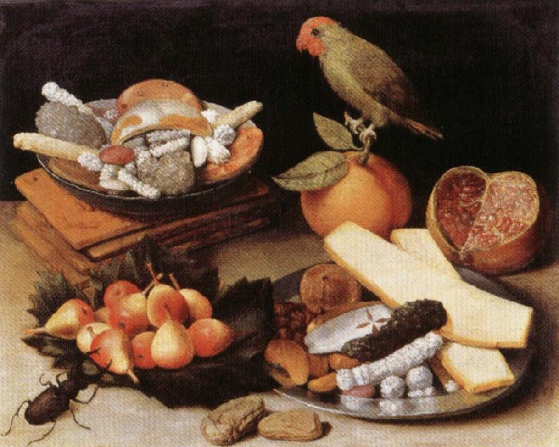 FLEGEL, Georg Still Life with Parrot oil painting picture