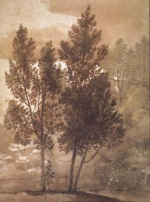 Claude Lorrain Trees (mk17) oil painting picture