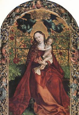 Martin Schongauer The Madonna of the Rose Garden (nn03) oil painting picture